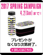 2017 SPRING CAMPAIGN